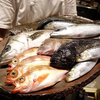 青森県佐井村から産直で仕入れてるお魚です。