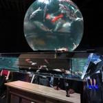 アートアクアリウム - (アースアクアリウム・ジャポニズム)地球儀をイメージした巨大水槽の中は錦鯉