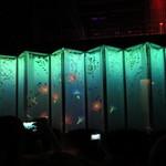 アートアクアリウム - (ビョウブリウムⅡ)12面屏風にプロジェクションマッピングで花鳥風月。大人気で近寄れません