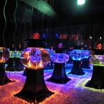 アートアクアリウム - (ボンボリウム)移り変わる光