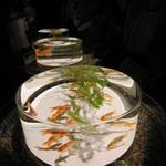 アートアクアリウム - (金魚品評)円筒の上から金魚を愉しむ作品
