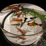 アートアクアリウム - (金魚品評)実際、金魚品評をするのに適したデザイン