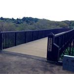 御食事処 曲屋 - ハスに架かる橋