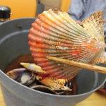 新島水産 - ヒオウギ貝のオレンジ色