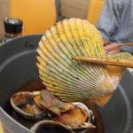 新島水産 - ヒオウギ貝のイエロー