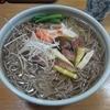 梅田屋 - 料理写真:・「冷やし肉そば(\800)」+「大盛(\100)」
