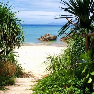 食後は誰もいないグランブルーの海で散歩はいかが?