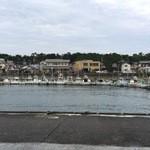 田子の浦港 漁協食堂 - 食事しながら、目の前が漁港