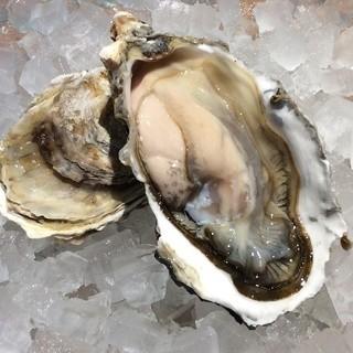 今年も牡蠣の季節がやってまいりました!