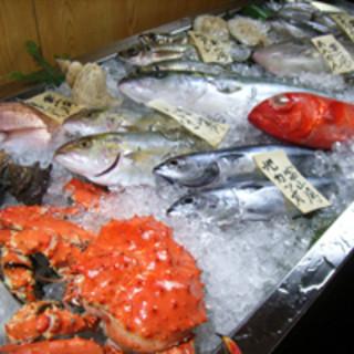 富山湾新湊漁港から直送の天然魚