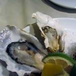 フィッシュ&オイスターバー - 真牡蠣は北海道釧路町の仙鳳趾産の牡蠣、冷たい荒い海が牡蠣を鍛え上げてるんでとってもクリーミーな味の牡蠣です。