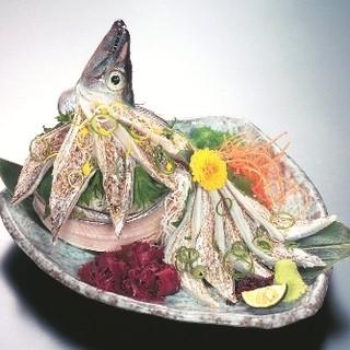 刺身・お寿司は圧巻の厚み!鮮度抜群の旬鮮魚を惜しみなく!