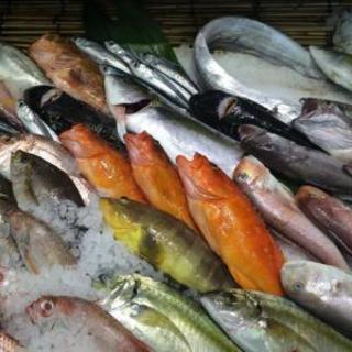 五島列島の新鮮な魚を使用しています!