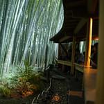 休耕庵 竹の庭の茶席 - 竹の庭の茶席