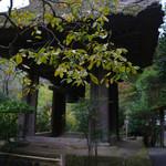 休耕庵 竹の庭の茶席 - 報国寺