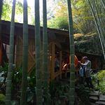 休耕庵 竹の庭の茶席 - 茶席 外観