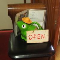 たゆたう - カエルが入口で待ってます