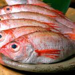 しまね家 - 料理写真:のどぐろ ピチピチの鮮魚です!