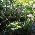 日本料理「むさしの」 - 環八通りの喧騒を遮るお庭です