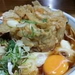 加賀 - かき揚げ玉子そば ねぎをオン 2014.9