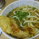 広島駅弁当 うどん - 普通のうどん