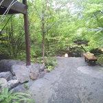 大自然 - 雑木林を開いたかの様に、木々に囲まれた自然豊かな露天風呂。