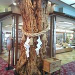 大自然 - 『大自然』フロント前のお土産屋とご神木的なヤツ