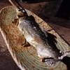 たかおか魚苑 - 料理写真:2014/05・鮎の塩焼き