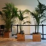 アロハテーブル - 2階の踊り場!!観葉植物が南国『ハワイ』のムードを醸し出している~♪(^o^)丿