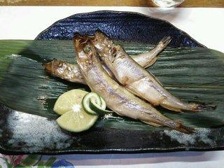 和一里 - 北海道産の本ししゃもメス・平成26年9月