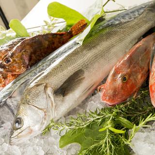 新鮮な旬の魚介をお楽しみいただけます