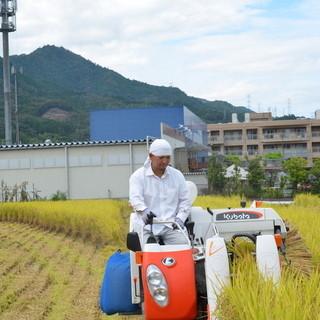 自家農場で作った近江米『きぬひかり』100%のお米!