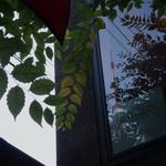 ファンゴー バンガロイド - 東京タワーが映り込む窓