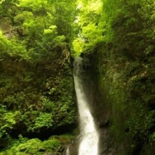 鹿児島シラス台地・高牧の森の天然水