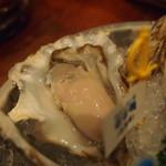 Oyster Bar ジャックポット - 老者舞(おしゃまっぷ 540円)