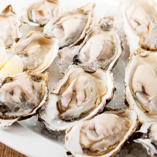 今週の生牡蠣‼︎ラインナップ‼︎