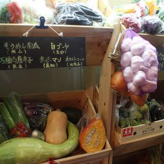 毎日直送*新鮮野菜