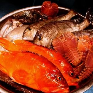 長崎天然鮮魚