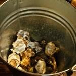 貝賊 - 貝の貝殻はバケツに捨てる