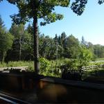 茶房 かわせみ - 2014.09_いい眺めです