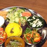 デリーキッチン シャンティ - スペシャルベジタリアンタリ Special Vegetarian Thali