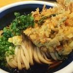 31485663 - 彩野菜のかき揚げぶっかけうどん1080円