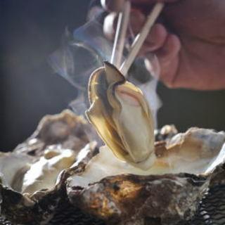 一年中美味しくいただける、かなわ名物の「瀬戸内海牡蠣」