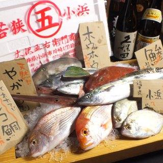 【豪華お造り船盛り】元気市場絶品料理!