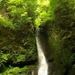 鹿児島県シラス台地 高牧の森の水