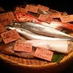 31659932 - お店のオススメの魚たち