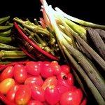 料理処 いなみ - 地元の農家さんから仕入れる「有機野菜」。本当の野菜の味をお楽しみください。