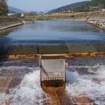 杉ケ瀬ヤナ - 2014.10 川の勢いは結構凄いです