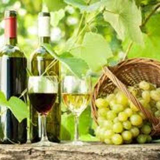 各国の美味しいワインがずらり!