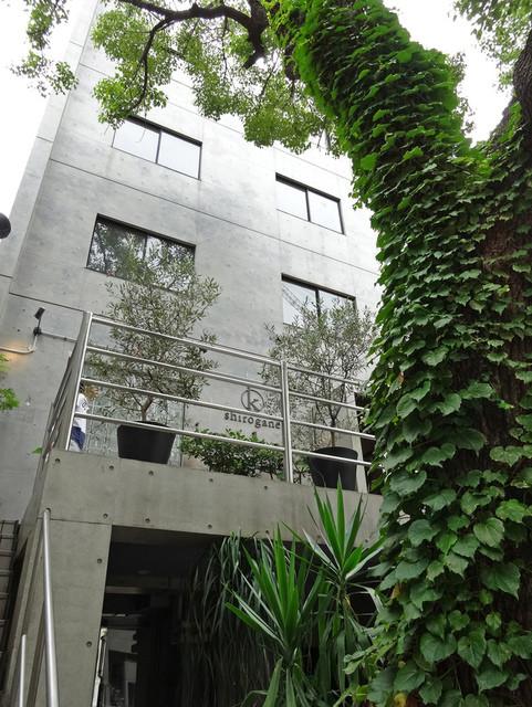 シロガネ イマカラ - 階段で2F テラスへ・・